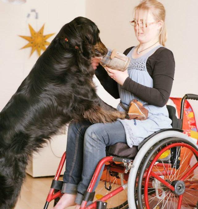 5. Mai – Europäischer Protesttag zur Gleichstellung von Menschen mit Behinderung 2020